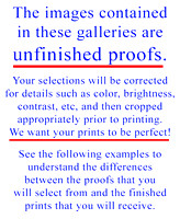 Examples of Proofs vs. Prints